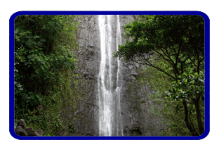 Manoa Falls Hawaii